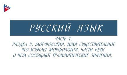 6 класс - Русский язык - Морфология. Части речи. О чём сообщают грамматические значения (Часть 1)