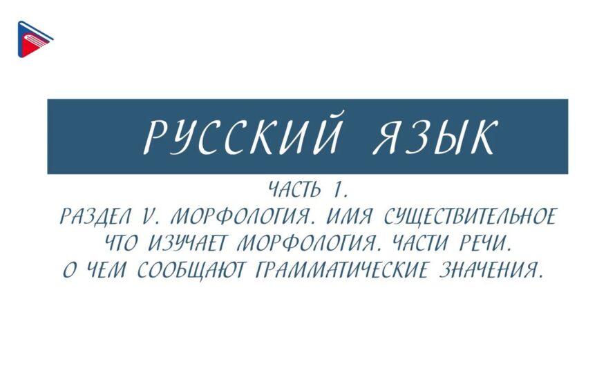 6 класс – Русский язык – Морфология. Части речи. О чём сообщают грамматические значения (Часть 1)