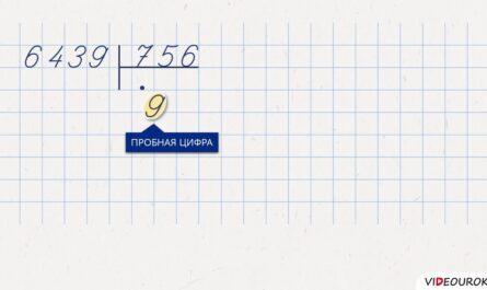 Видеоурок «Письменное деление на трёхзначное число»