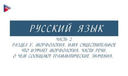 6 класс - Русский язык - Морфология. Части речи. О чём сообщают грамматические значения (Часть 2)