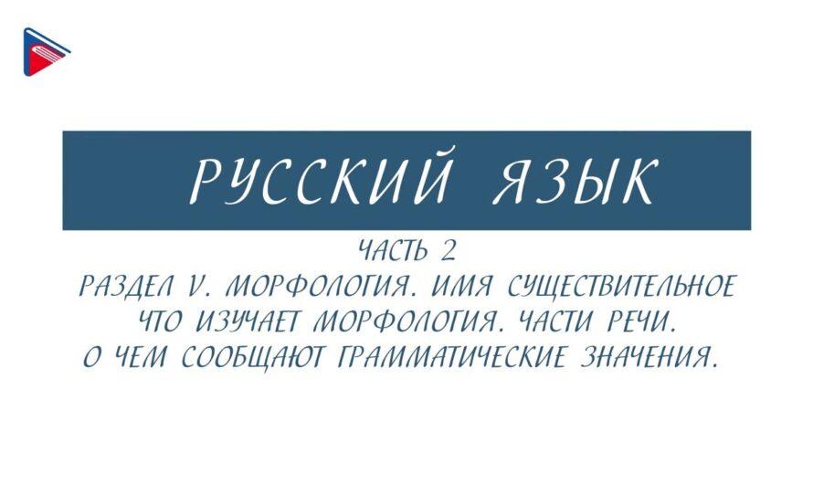 6 класс – Русский язык – Морфология. Части речи. О чём сообщают грамматические значения (Часть 2)