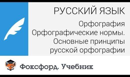Русский язык. Орфография. Орфографические нормы. Основные принципы русской орфографии