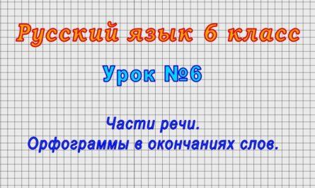 Русский язык 6 класс (Урок№6 - Части речи. Орфограммы в окончаниях слов.)
