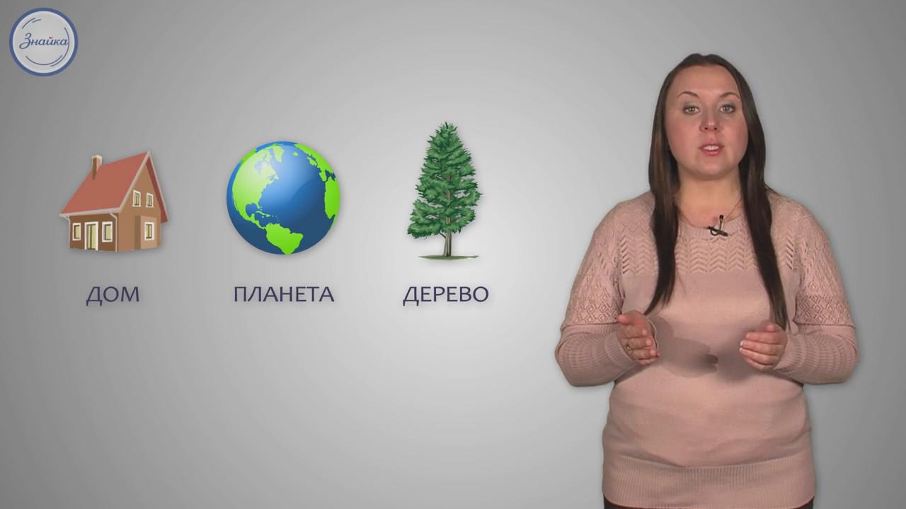 Русский язык 5 класс. Морфология как раздел грамматики. Слово как часть речи