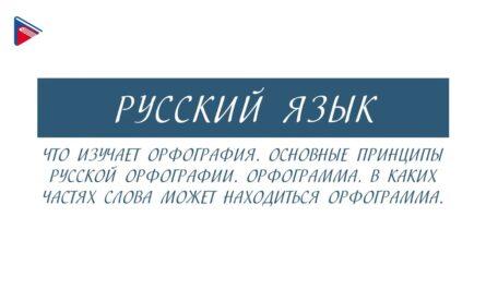 6 класс - Русский язык - Что изучает орфография. Основные принципы. Где может находиться орфограмма