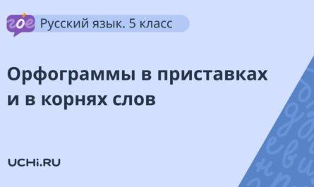 Русский язык 5 класс: орфограммы в приставках и в корнях слов