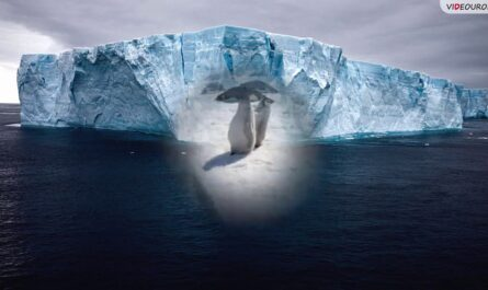 Путешествие по материкам. Антарктида