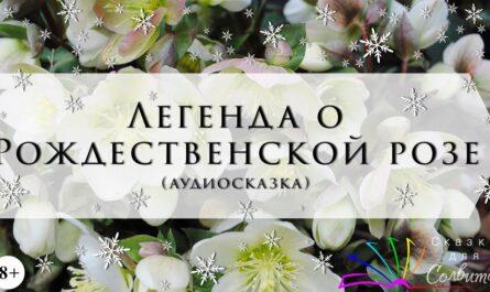 Легенда о Рождественской розе | Сельма Лагерлёф | Рождественские истории