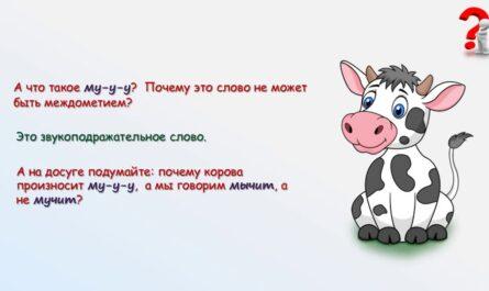 Русский язык 7 класс  Междометие как часть речи