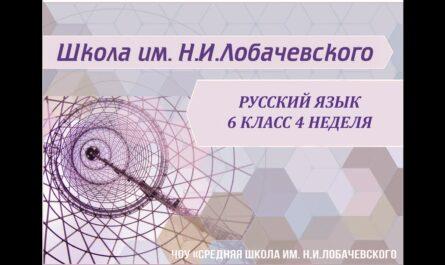 Русский язык 6 класс 4 неделя Лексика. Фразеология.