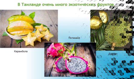 """Проект """"Страны мира"""" 2 класс Плешаков А.А."""