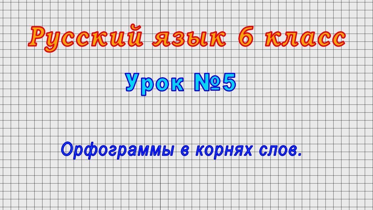 Русский язык 6 класс (Урок№5 - Орфограммы в корнях слов.)