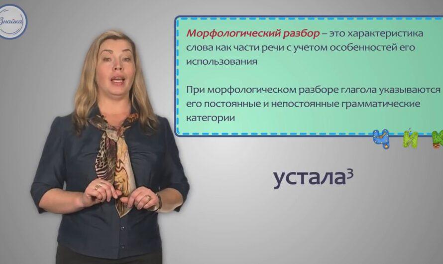 Разбор глагола как части речи