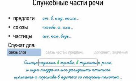 Служебные части речи (7 класс, видеоурок-презентация)