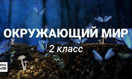 """2 класс-Окружающий мир-""""Лето красное""""-06.05.2020г."""