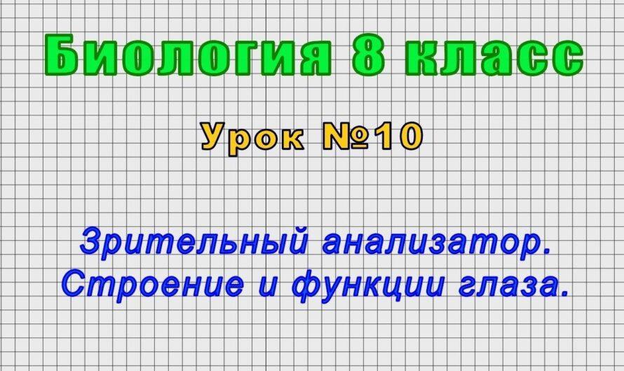 Биология 8 класс (Урок№10 – Зрительный анализатор. Строение и функции глаза.)