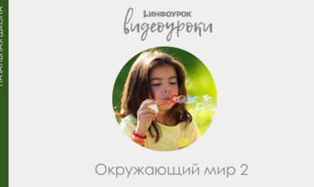 Наша Родина – Россия | Окружающий мир 2 класс #1 | Инфоурок