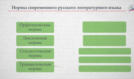 Разделы науки о русском языке