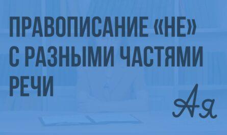 Повторение орфографии. Правописание НЕ с разными частями речи. Видеоурок по русскому языку 9 класс