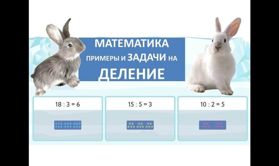 Математика. Примеры и задачи на Деление. 2 класс.