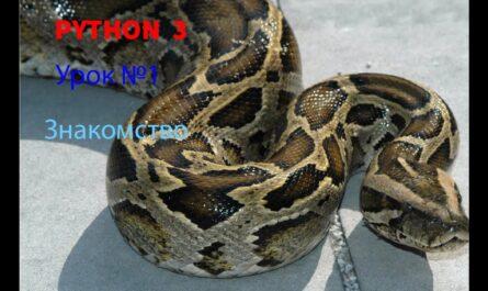 PYTHON  3.6 Урок №1 Знакомство