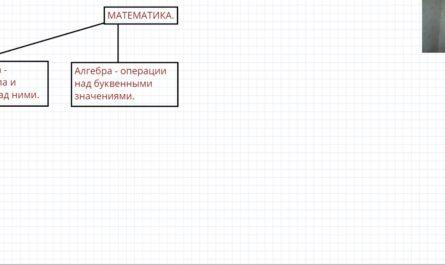 Разделы математики в школе
