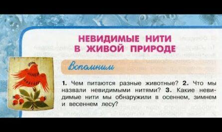 """Окружающий мир 3 класс ч.1, тема урока """"Невидимые нити в живой природе"""", с.94-97, Перспектива."""