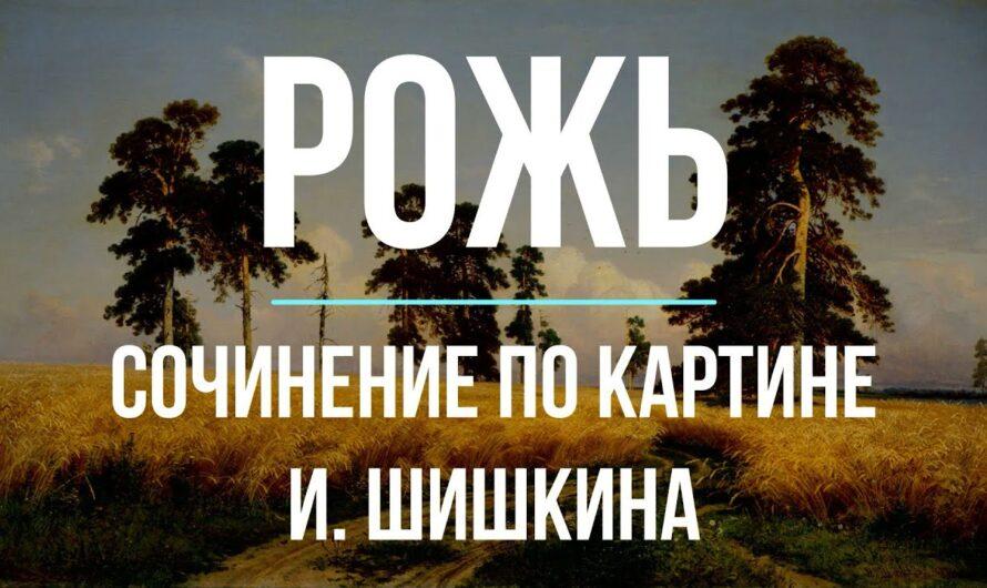 Сочинение по картине «Рожь» И. Шишкина