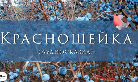 Красношейка | Сельма Лагерлёф | Пасхальные сказки | Аудиосказки с картинками
