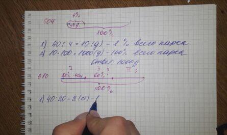 5 класс примеры решения задач на проценты