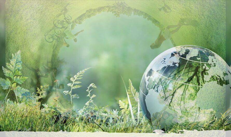 """Окружающий мир 1 класс ч.2, """"Почему мы часто слышим слово """"экология""""?"""", с.74-75, Школа России"""