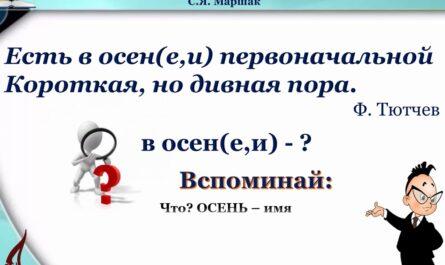 Правописание окончаний существительных в единственном числе