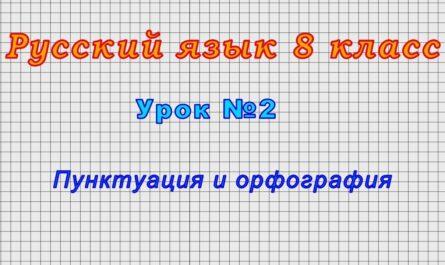 Русский язык 8 класс (Урок№2 - Пунктуация и орфография)