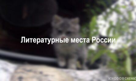 ЛИТЕРАТУРНЫЕ МЕСТА РОССИИ | KHODORCHENKO
