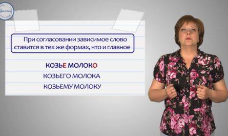 Русский 8 Основные единицы синтаксиса