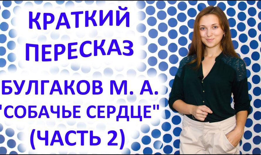 Пересказ Булгаков М. А. «Собачье сердце» Часть 2