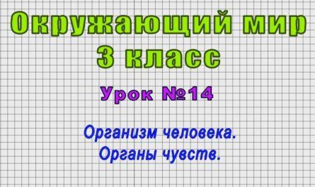 Окружающий мир 3 класс (Урок№14 - Организм человека. Органы чувств.)