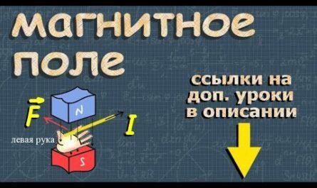 МАГНИТНОЕ ПОЛЕ 9 и 11 класс физика