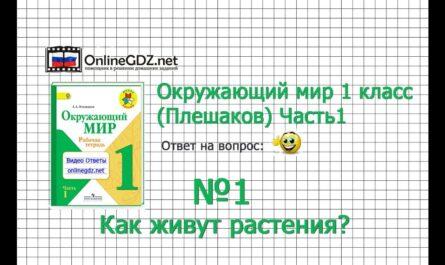 Задание 1 Как живут растения? - Окружающий мир 1 класс (Плешаков А.А.) 1 часть