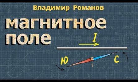 МАГНИТНОЕ ПОЛЕ задачи ЛИНИИ магнитного поля Перышкин