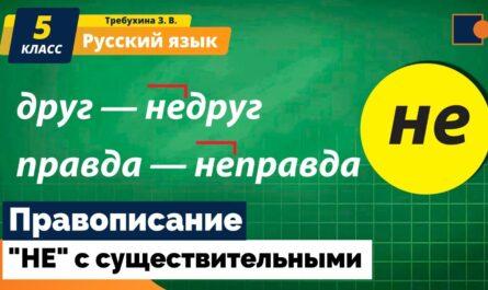 """Русский язык. """"НЕ"""" с существительными."""