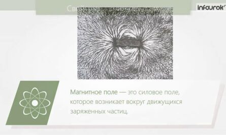 Магнитное поле. Физика 9 класс