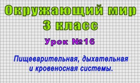 Окружающий мир 3 класс (Урок№16 - Пищеварительная, дыхательная и кровеносная системы.)