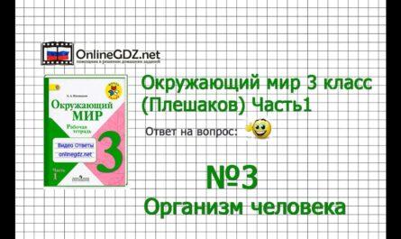Задание 3 Организм человека - Окружающий мир 3 класс (Плешаков А.А.) 1 часть