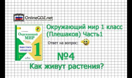 Задание 4 Как живут растения? - Окружающий мир 1 класс (Плешаков А.А.) 1 часть