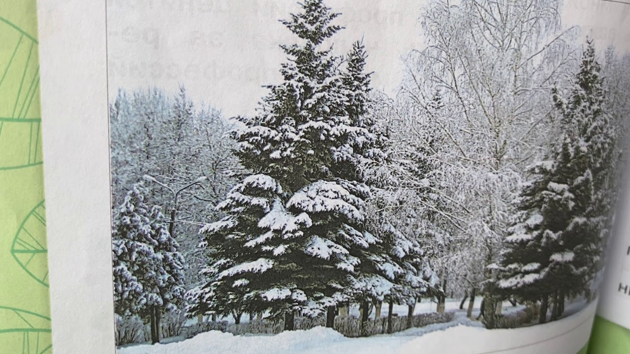 Окружающий мир/2 класс/Плешаков/часть 1/ В гости к зиме/13.01.21