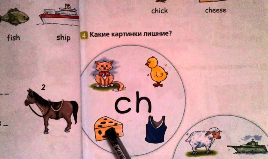4 урок-Letter Blends! Буквосочетания sh и ch. Английский язык по школьной программе.