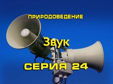 Природоведение 24. Звук
